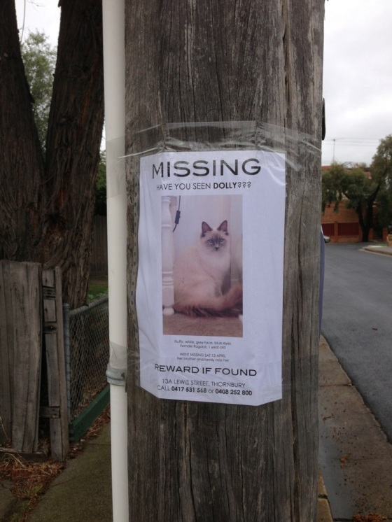 The Missing poster :(